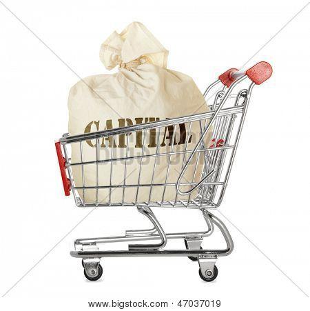 Sack full of money in shopping cart isolated on white background