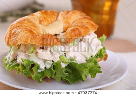 Chicken Salad Sandwich Closeup