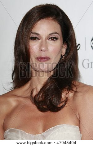 BEVERLY HILLS - JUL 12:  Teri Hatcher at the Disney ABC Television Group Summer All Star party on July 12, 2008 in Beverly Hills, California.