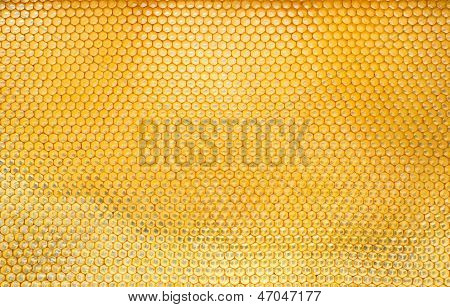 Pattern Of Hexangon Honeycomb In A Beehive