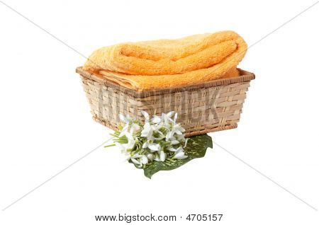 Snowdrop And Towel In The Basket.