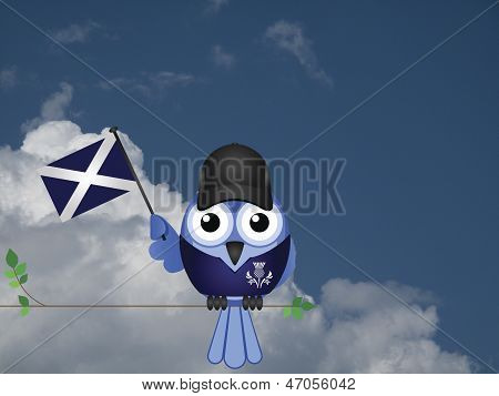 Scottish Patriot