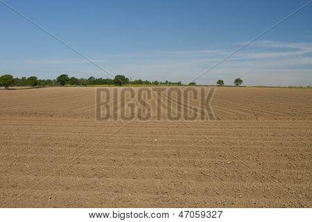Campo lavrado