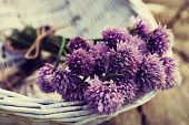 stock photo of chives  - Fresh chives flower over rustic background - JPG
