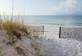 stock photo of gulf mexico  - Landscape of dunes beach and ocean at sunrise on the Gulf of Mexico - JPG