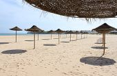image of lagos  - Sun shades in a row at Meia Praia in Lagos Algarve Portugal Europe - JPG