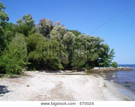 Paletta Park Beach