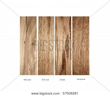 sample of Willow,Ramin,Oak-Red and Oak Quartered wood