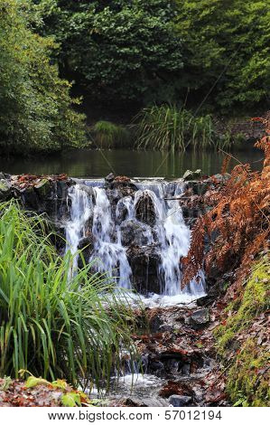 A small pond and waterfall in Clyne Gardens, The Mumbles, South Wales