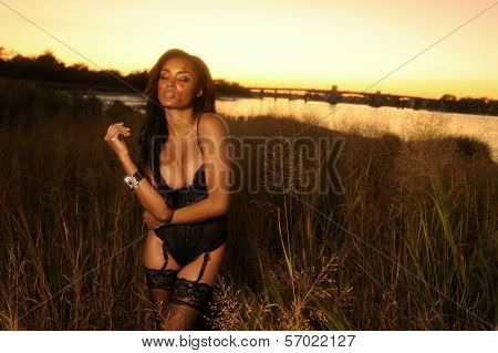Beautiful African-American woman wearing black lingerie