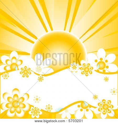 vector illustration of colorful summer background with daisies, water-drops and place for text