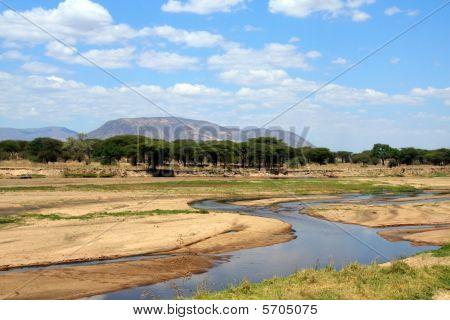 Ruaha river in african savanna