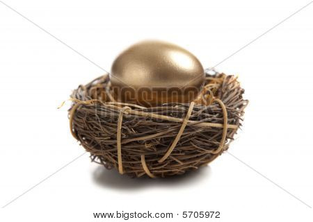 A Golden Egg In Nest