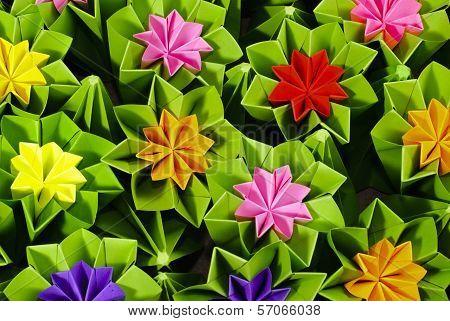 Origami Bunch