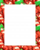 foto of candy cane border  - Candy cane border with white message panel panel - JPG