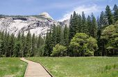 stock photo of horsetail  - Wooden trail to Horsetail fall Yosemite National Park California - JPG