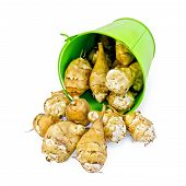 stock photo of jerusalem artichokes  - Pile of Jerusalem artichoke poured out a small green bucket isolated on white background