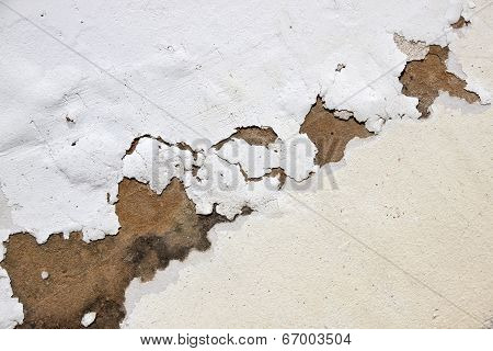Bubbling Paint On Exterior Wall Due To Neglect