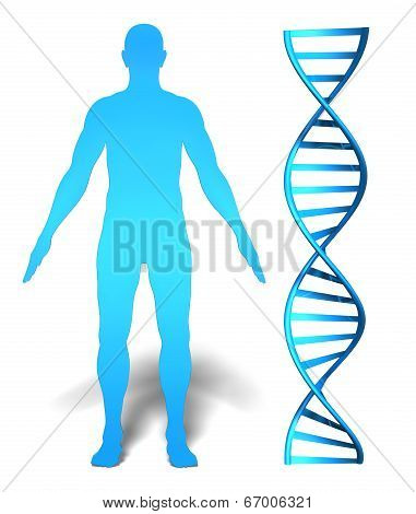 Human gene research and genetic information concept with a DNA spiral