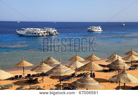 Red Sea Beach, Sharm El Sheikh, Egypt