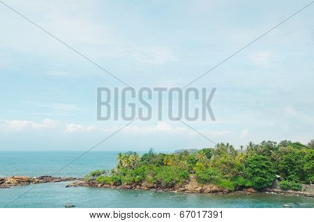 Peninsula With Tropical Palm Trees And Waterscape