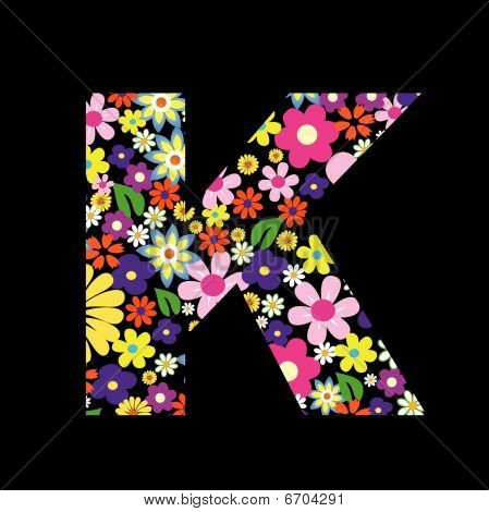 Vector flower font  letter K  K Letter In Different Fonts