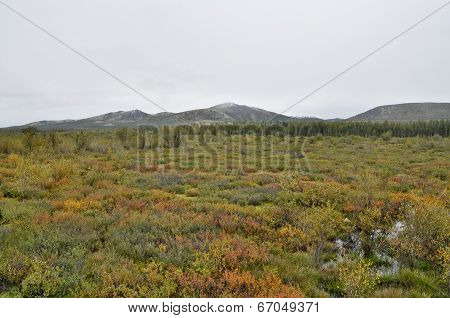 Autumn Tundra On The Background Of Mountains In Yakutia.