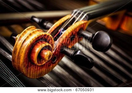 Detail Of Violin Head With String Background