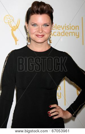 LOS ANGELES - JUN 19:  Heather Tom at the ATAS Daytime Emmy Nominees Reception at the London Hotel on June 19, 2014 in West Hollywood, CA