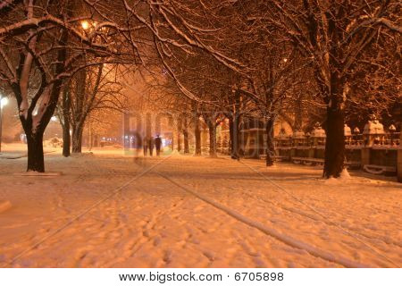 Night Winter Landscape