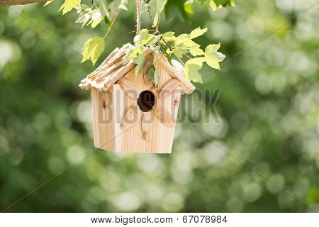New Wooden Birdhouse Hanging On Tree Branch Outdoors