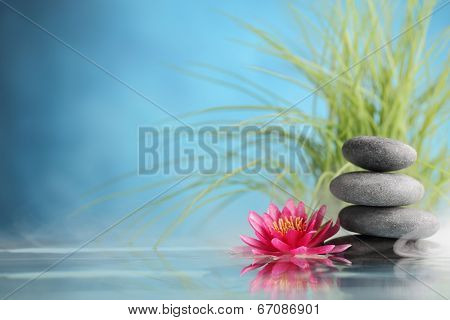 Spa still life with water lily and zen stone in a serenity pool
