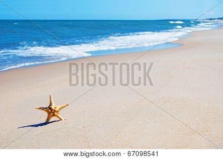 Vacation Conceptual Image.