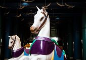 image of carousel horse  - Two white carousel horses under light in a dark promenade - JPG