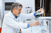 image of chromatography  - Senior male researcher carrying out scientific research in a lab  - JPG