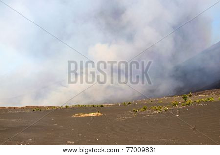Field Leading To The Eruption Site