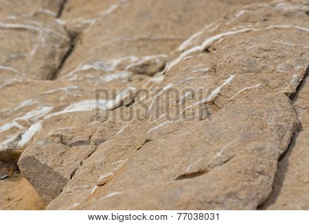 Limestone rock with white calcite veins