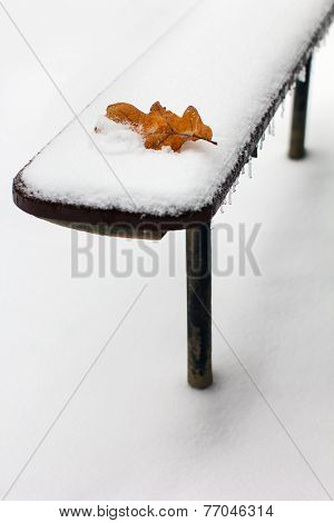 The Oak Leaf Lies On The Bench Which Is Swept Up By Snow