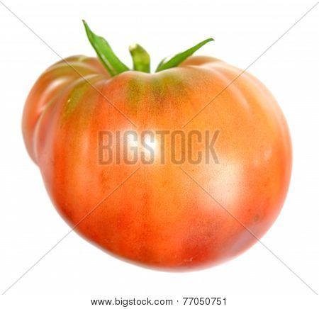 Helium Tomato