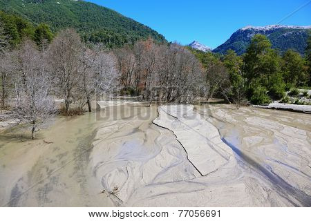 Riverbed in the mountains of the Argentine Patagonia. Many trees withered in the eruption. The river is almost completely covered with volcanic ash