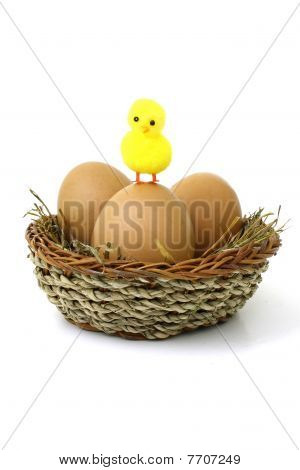 Easter chicken