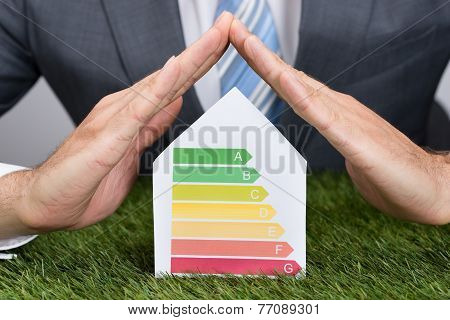 Businessman Shielding Energy Consumption Label On Grass