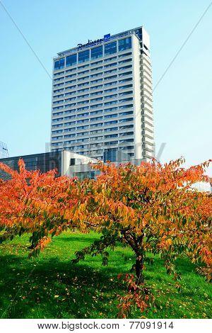 Beautiful Sakura Cherry At Autumn Time To Remember Chiune Sugihara