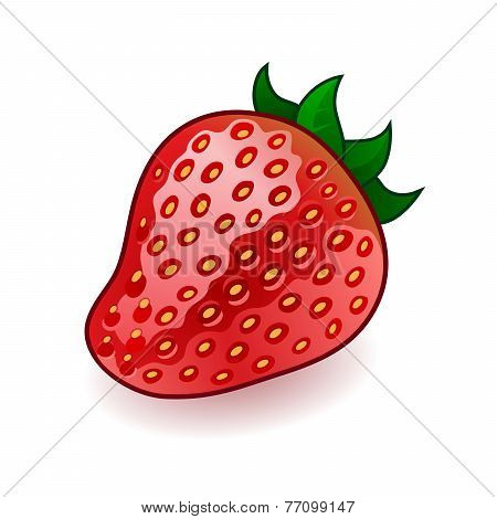 Isolated fresh shiny strawberry on white background