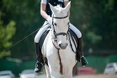 foto of horse-riders  - children dressage - JPG