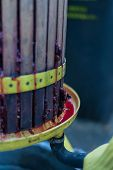 pic of wine-press  - Close up of traditional wine making in Romania