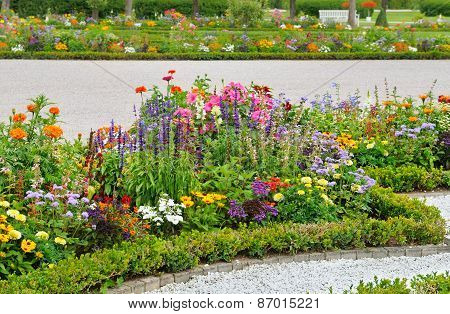 Delightful Flower Bed In The Summer Park