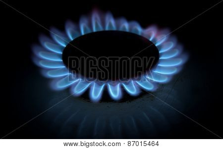 Blue Gas Stove