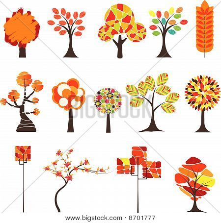 Colorful Autumn tree. Vector illustration