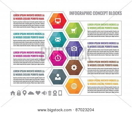 Business infographic concept colored hexagon blocks in flat style design. S